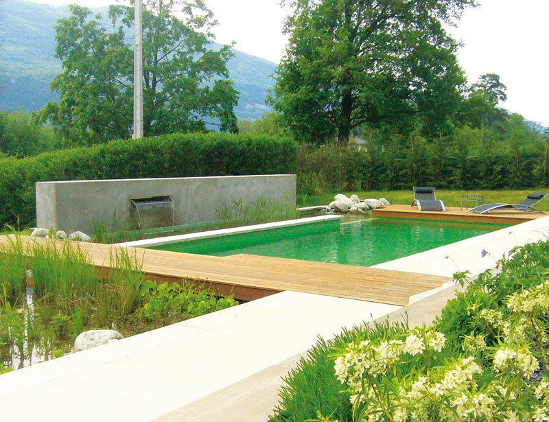 convertir una piscina en un estanque natural es la mejor apuesta para fundirla con la naturaleza